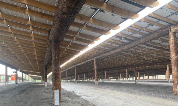 Pairi Daiza construit le plus grand parking photovolta�que du monde