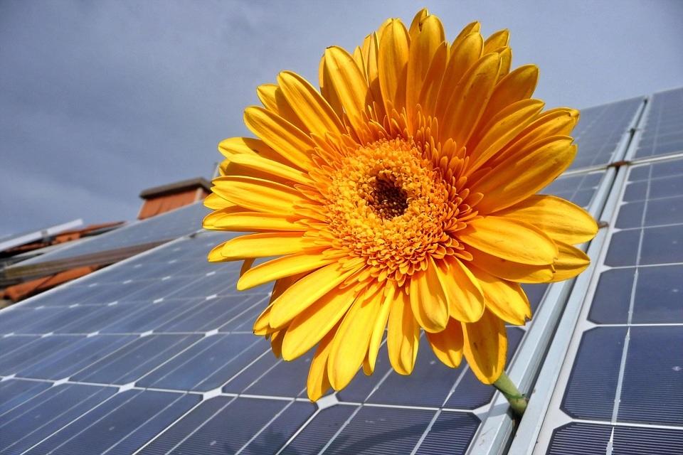 Photovolta�que : Un nouveau service d'accompagnement aux d�marches administratives